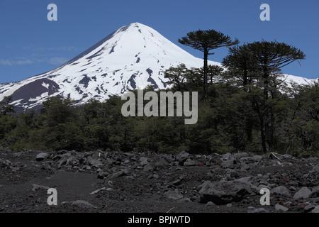 December 4, 2009 - Llaima volcano, Araucania region, Chile. - Stock Photo