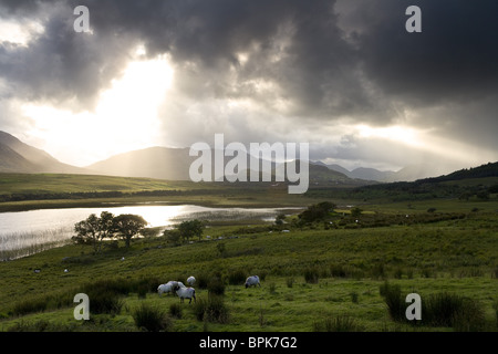 Lough Corrib, Connemara, Co. Galway, Ireland, Europe - Stock Photo