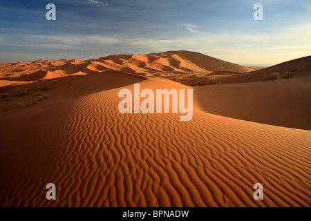 Light and shadow play at sunrise across the dunes of Erg Chebbi near Merzouga in Morocco - Stock Photo