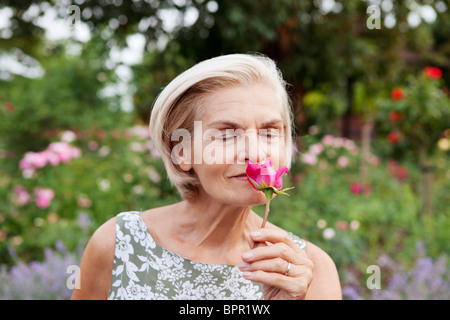 Mature woman smells rose in rose garden - Stock Photo