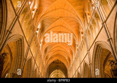 Southwark Cathedral Gothic style Anglican church on South Bank of River Thames London UK - Stock Photo