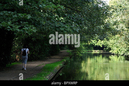 Woman walking on the Grand Union Canal tow path in Hertfordshire, UK. - Stock Photo