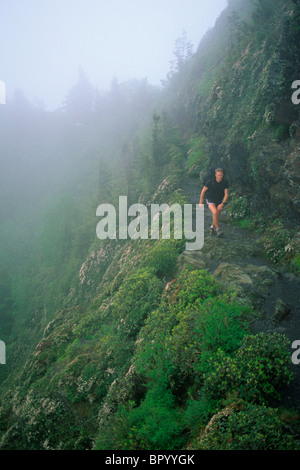 Male hiker on the AppalachianTrail along the TN/NC border in the Great Smoky Mountains National Park. - Stock Photo