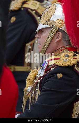 Close up Colonel T W Browne. 'Trooping the Colour' 2010 - Stock Photo
