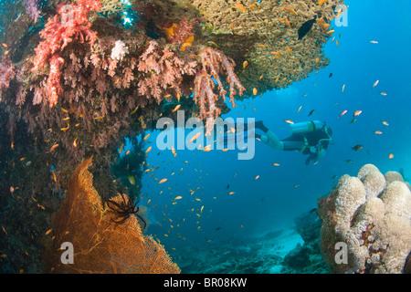 scuba divers at Similan Islands Underwater Park, Thailand, SE Asia - Stock Photo