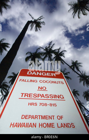 A warning sign forbids visitors due to the dangers of falling coconuts. - Stock Photo