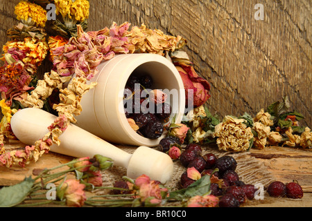 Still-life with mortar, rose hips and dried flowers - Stock Photo