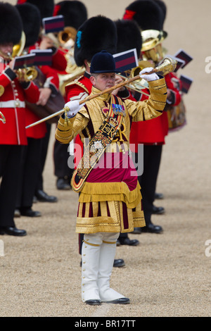 Drum Major and musicians of the Massed Bands. 'Trooping the Colour' 2010 - Stock Photo