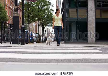 A young woman and her dog waiting to cross the road - Stock Photo