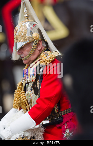 Close-up of General the Lord Guthrie of Craigebank. 'Trooping the Colour' 2010 - Stock Photo