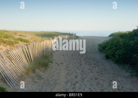 Sand dunes, a fence, and shrubs line the path to Egypy beach, East Hampton, Long Island, NY. - Stock Photo