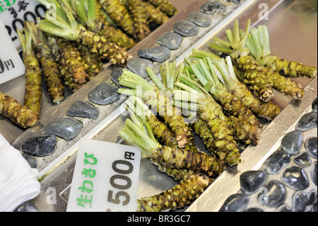 Nagano/ Japan- Fresh Wasabi roots at greengrocery stand - Stock Photo
