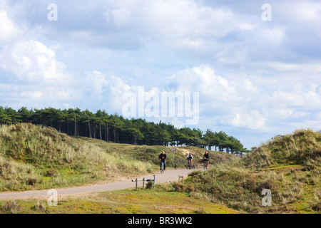 Bicycle path in the Kennemerduinen, the central part of South Kennemerland National Park nature reserve in the Netherlands. - Stock Photo