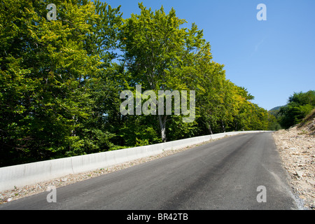 Landscape with a road going through trees under blue sky - Stock Photo