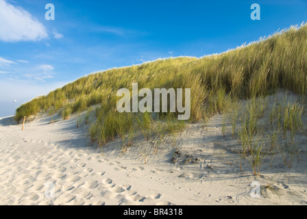 Beach and dunes on Wangerooge, Germany - Stock Photo