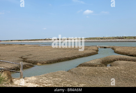 Tidal marshes at the inlet to Rye harbour, this area is perfect for the supply of Rye bay scallops - Stock Photo
