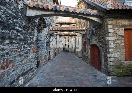 Vene, historic town centre, Tallinn, Estonia, Baltic States, North-East Europe - Stock Photo