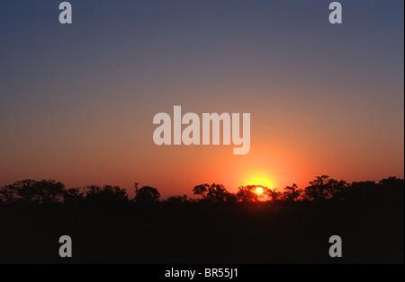 African sunset, Okavango Delta, Botswana. - Stock Photo