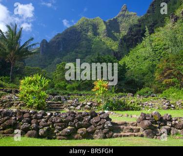 Kauai, HI: Limahuli Garden, National Tropical Botanical Garden Stock ...