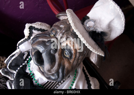 Life-size bulldog figure in 'Downtowner's on Dauphin' Cafe in Mobile, Alabama, USA - Stock Photo