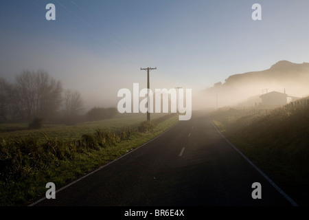 A misty country road in Tolaga Bay on New Zealand's East Cape. - Stock Photo