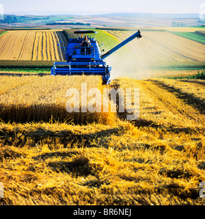 COMBINE HARVESTER IN WHEAT FIELD ALSACE FRANCE - Stock Photo