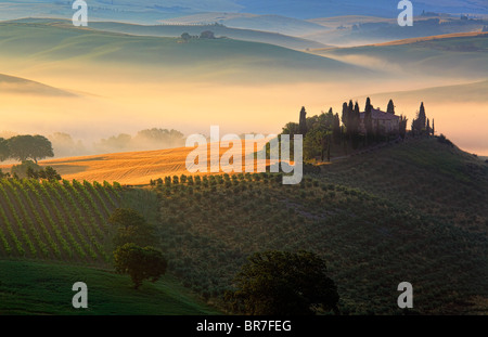 Villa on a hill in Val d'Orcia, a region of Tuscany in central Italy, at sunrise - Stock Photo