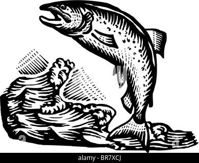 A Fish Jumping Out Of The Water Drawn In Black And White