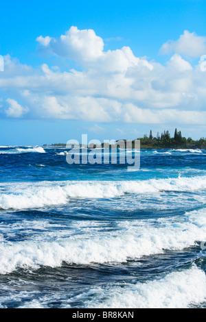 Seascape, Hawaii, USA - Stock Photo