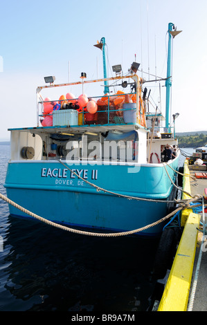 Eagle eye ll swordfish fishing boat part of the discovery for Fishing shows on discovery channel