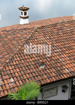 roof tiles - view from villa to maggiore lake - canton of ticino - switzerland - Stock Photo