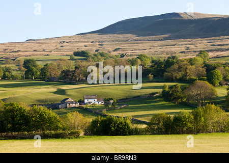 Dentdale in the Yorkshire Dales National Park, south east of Dent, Cumbria looking towards Whernside - Stock Photo
