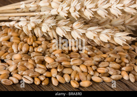 Wheat on wooden desk - Stock Photo