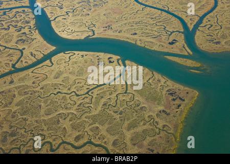 Aerial view of river tributaries, saltmarsh and coast, Odiel, Costa de la Luz, Huelva, Andalucia, Spain, March 2008 - Stock Photo