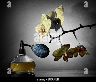 Perfume and Orchid (Colorized) - Stock Photo