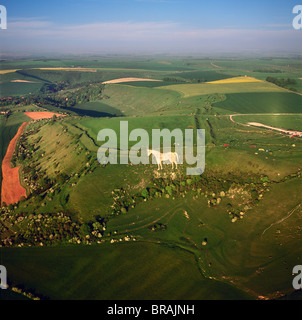 Aerial view of the Westbury White Horse and the Iron Age Bratton Camp Hill Fort, Wiltshire, England, United Kingdom, - Stock Photo