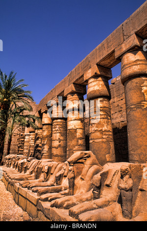Ancient ruins of kings at the Temple of Karnak in Luxor Egypt - Stock Photo
