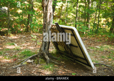Poor 'Leave No Trace' habits along the the Sawyer River Trail in the White Mountains, New Hampshire USA. - Stock Photo