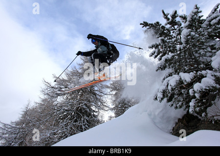 A skier jumps over some rocks and between pine trees lifting powder snow on a Val Gardena off piste slope - Stock Photo