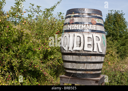 Cider Barrels in Kent - Stock Photo