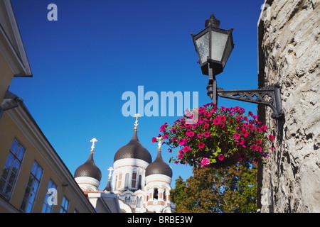 Alexander Nevsky Cathedral, Toompea, Tallinn, Estonia, Baltic States - Stock Photo