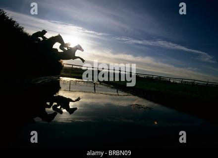 Steeplechase jockeys jump their horses over water jump - Stock Photo
