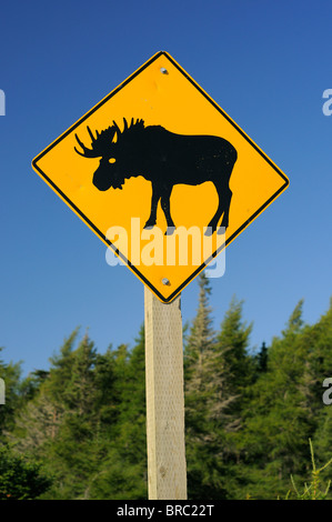 Canadian Highway Sign Warning About Moose On The Road - Stock Photo