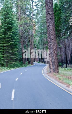 Road in Yosemite National Park, California, USA - Stock Photo
