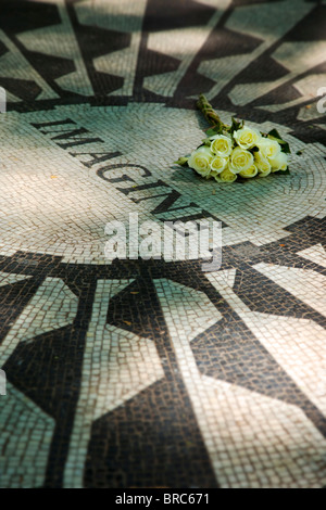 White roses placed on 'Imagine' - the John Lennon Memorial mosaic in Strawberry Fields inside Central Park, New York City USA