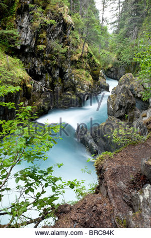 Winner Creek Gorge, Chugach National Forest, Alaska - Stock Photo