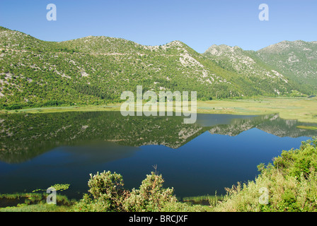DALMATIAN COAST, CROATIA. The Neretva Delta near Ploce in southern Dalmatia. - Stock Photo