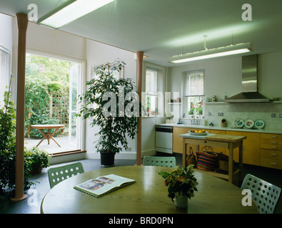 Tall houseplant beside open patio doors in well-lit modern townhouse kitchen dining room with pale wood table - Stock Photo