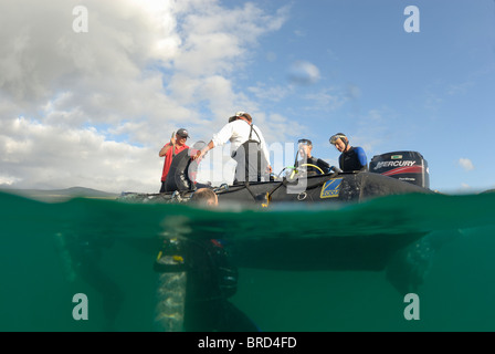 Group of scuba divers in water and on boat, (split shot half underwater), Ecuador, Galapagos Archipelago, San Cristobal - Stock Photo