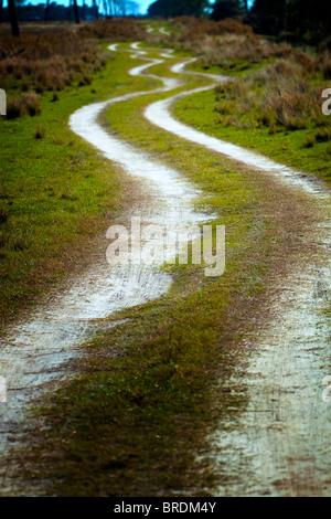 Winding dirt road - Stock Photo